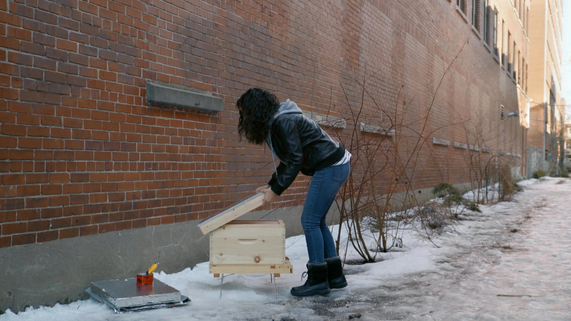 hive wintering with a beekeeper