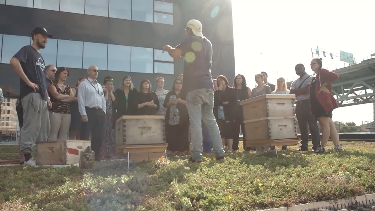 An urban beekeeper talk to a group of people during a workshop on the green rooftop of SSQ.